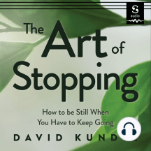 The Art of Stopping: How to Be Still When You Have to Keep Going