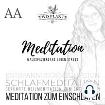 Waldspaziergang gegen Stress - Meditation AA - Meditation zum Einschlafen: Schlafmeditation - Entspannungsmeditation - Geführte Heilmeditation zum Entspannen