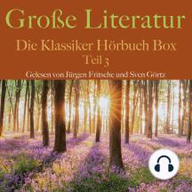 Große Literatur: Die Klassiker Hörbuch Box: Teil 3