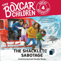 Boxcar Children Mysteries