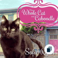 Second Chance Cat Mystery