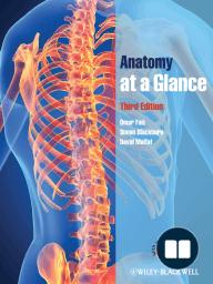 Anatomy at a Glance
