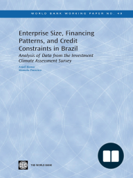 Enterprise Size, Financing Patterns, and Credit Constraints in Brazil