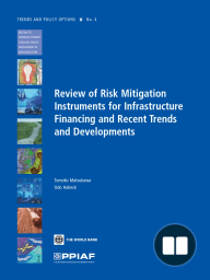 Review of Risk Mitigation Instruments for Infrastructure