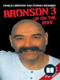 Bronson 3