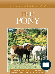 Understanding the Pony
