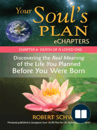 Your Soul's Plan eChapters - Chapter 6