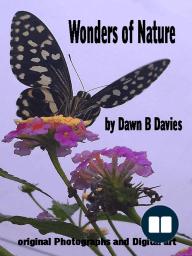 Wonders of Nature