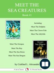 Meet The Sea Creatures Book #1