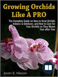 Growing Orchids Like A Pro