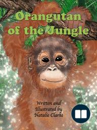 Orangutan of the Jungle