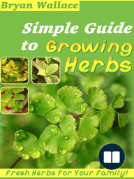 Simple Guide to Grow Herbs