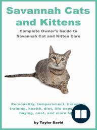 Savannah Cats and Kittens