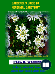 Gardener's Guide To Perennial Candytuft