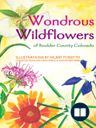 Wondrous Wildflowers of Boulder County Trails
