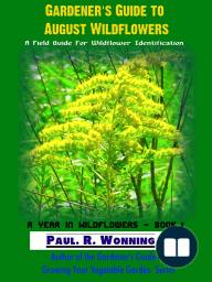 Gardener's Guide to August Wildflowers