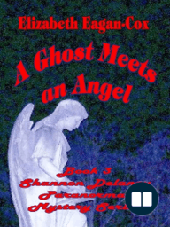 Ghost Meets an Angel