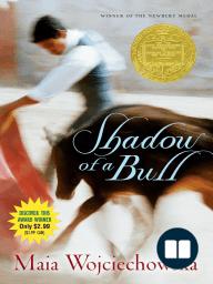 Shadow of a Bull