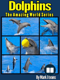 Dolphin Book for Kids