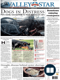 The Valley Morning Star - 07-28-2014
