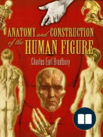 Anatomy and Construction of the Human Figure