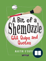 A 'A Bit Of A Shemozzle'