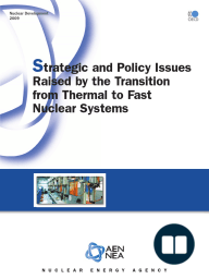 Strategic and Policy Issues Raised by the Transition from Thermal to Fast Nuclear Systems