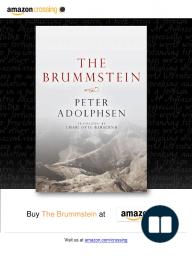 The Brummstein [Excerpt] by Peter Adolphsen, translated by Charlotte Barslund
