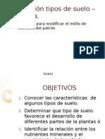 Presentacion Vegetal Vi Semestre.