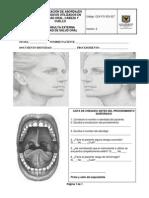 CEX-FO-323-027 Localización  de Abordajes Quirúrgicos Utilizados en Cavidad Oral, Cabeza y Cuello