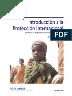 ACNUR, Introducción a la protección internacional, Módulo autoformativo 1