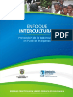 Enfoque Intercultural, Prevención de la Tuberculosis en Pueblos Indígenas