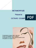 Metamorfoze in Pictura Lui Octavio Ocampo