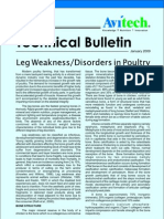 Leg Disorders in Poultry
