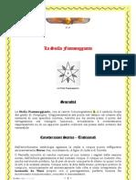002 Scribd Stella Fiammeggiante