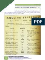 Galline italiane - Da Rivista degli Allevatori