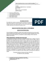 Analisis de Gestion Social Para El Sector Minero