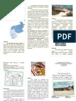 La Región de Guayana