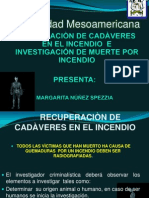 Investigacion+de+Incendios
