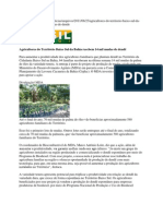 Agricultores do Território Baixo Sul da Bahia recebem 14 mil mudas de dendê