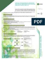 FinalPöster.pdf