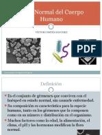 2-floranormaldelcuerpohumano-