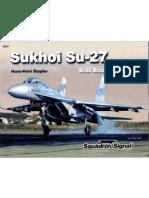 Sukhoi Su 27 Flanker Walk Around 47