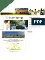 Dublin Springs-Open House Postcards