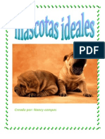 mascotas ideales