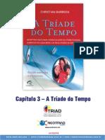 TriadedoTempo-ResumoCap3