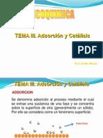 Tema III. Adsorcion y Catalisis