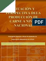 producción de carne a nivel nacional