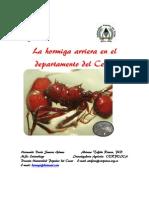 La Hormiga Arriera en El Departamento Del Cesar