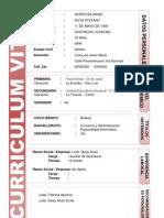 Curriculum Vitae3